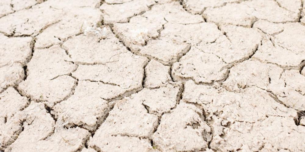 dry, cracked soil