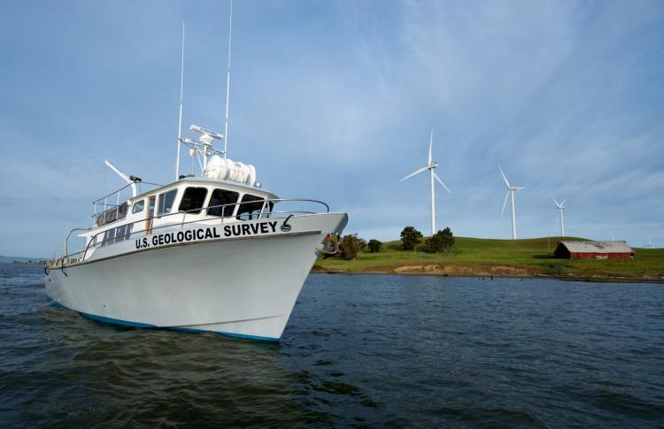 Estuary News